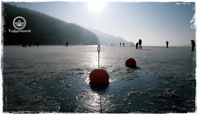 Gartenblog Topfgartenwelt Eislaufen: Boje im Eis, Wallersee