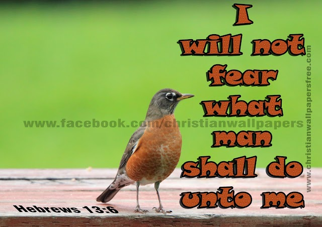 I will not fear what man shall do unto me