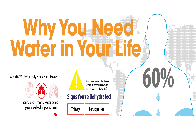 Why You Need Water In Your Life #infographic