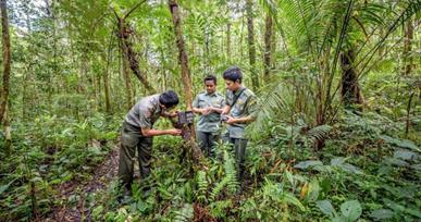 Manajemen konservasi lingkungan