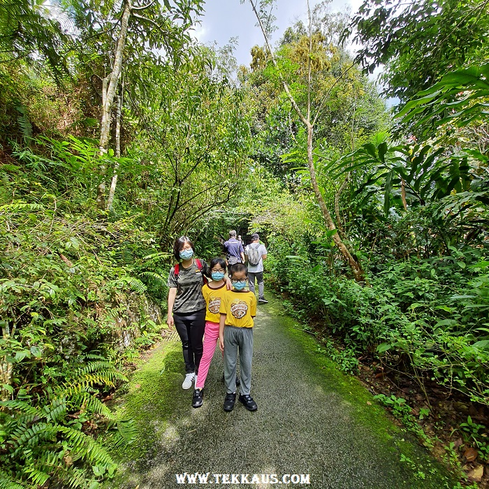Is it worth it The Habitat Penang Hill Review Ticket Price