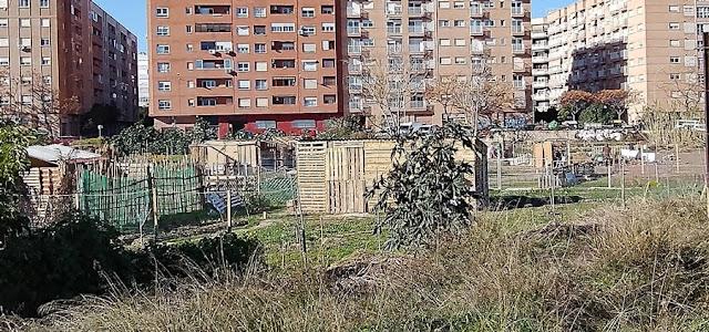 Imagen 14: En Benimaclet sigue las mismas pautas que en otras ciudades y pueblos de la Comunidad Valenciana: Masías, casas y tierras ocupadas, chabolas construidas en solares.
