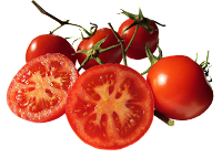 tomato-vinaigrette-recipe