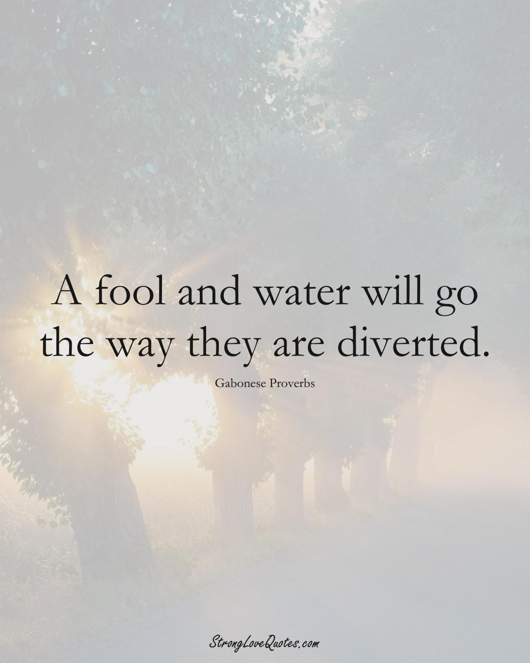 A fool and water will go the way they are diverted. (Gabonese Sayings);  #AfricanSayings