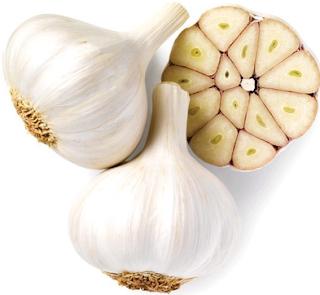 Manfaat bawang putih tunggal