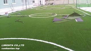 Sân chơi mầm non trường Quốc tế anh ngữ Bvis Hà Nội