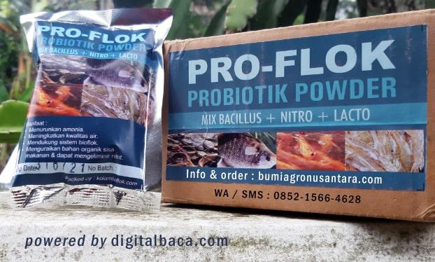 probiotik ikan, probiotic ikan, probiotik ikan lele, probiotik ikan proflok, proflok, proflok probiotik ikan, probiotik ikan pro-flok, probiotik ikan alami,