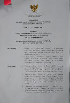 Formasi dan Persyaratan CPNS 2018 Kabupaten Mesuji