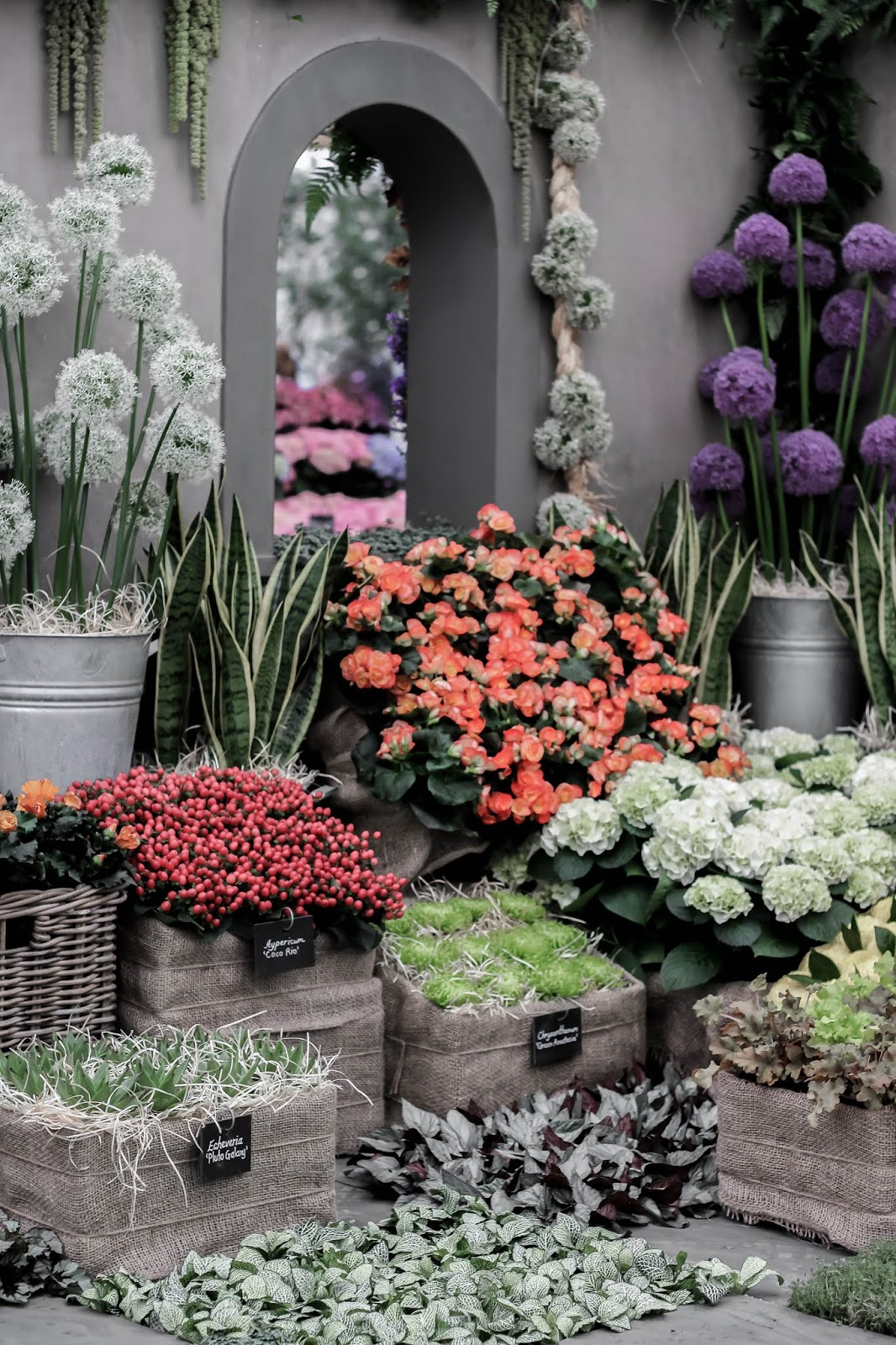 Best Exhibits at Chelsea Flower Show 2018 Marks & Spencer