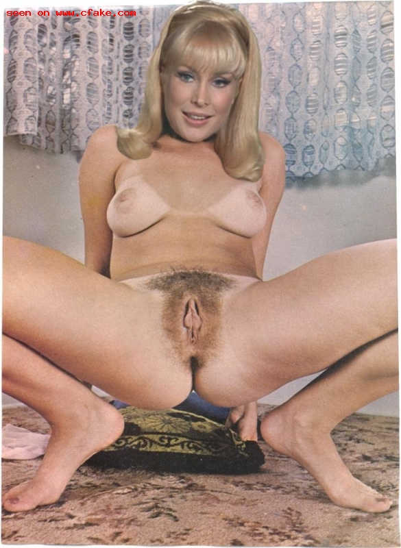 Apologise, but, Barbara eden in panties