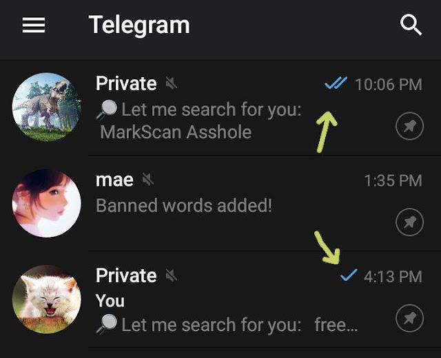Privacy doubtful on Telegram