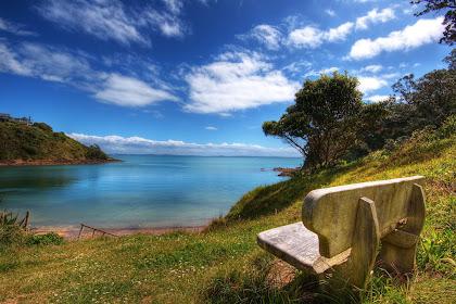 Romantic Nature Chairs