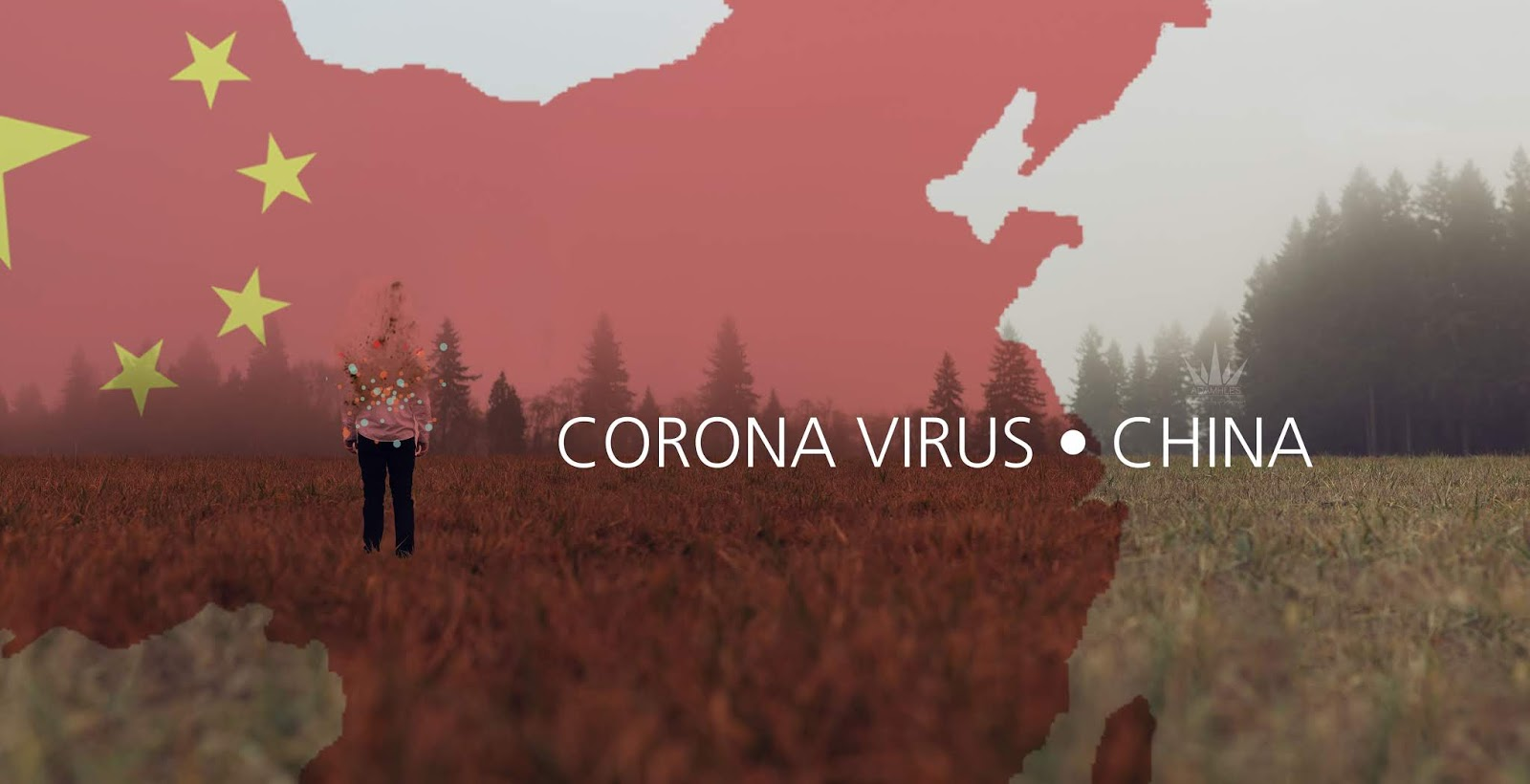 Virus China
