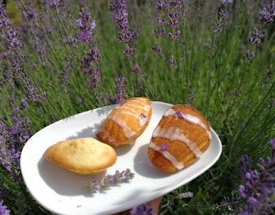 Lavendel-Madeleines (Madeleines à la lavande)