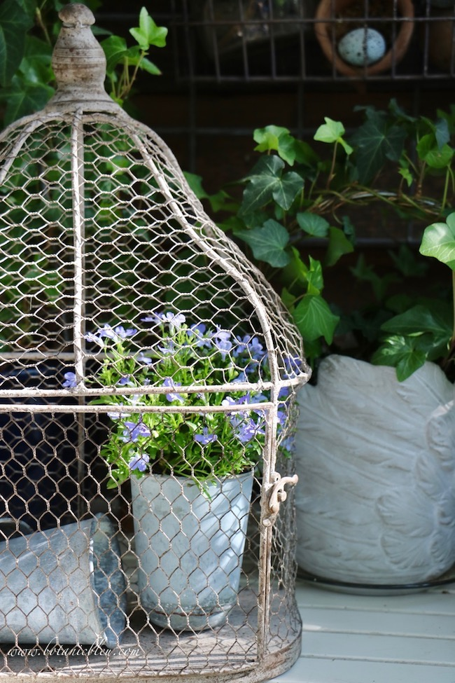 French Country Spring potting table with a wire birdcage and vintage French zinc seed pots