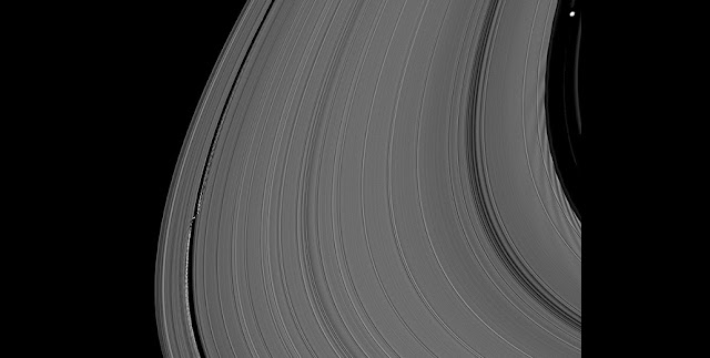 A team of Saturn moon keeps Saturn's A ring from spreading. This image from NASA's Cassini mission clearly show the ring's density waves created by the small moons. The waves look like the grooves in a vinyl record.