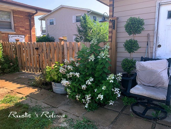 Backyard patio and garden tour in a beautiful Indiana garden with gorgeous year round color.