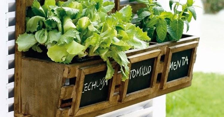Cocina Segura Cmo crear un huerto en casa sin riesgos