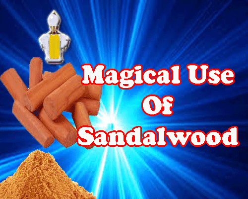 all about Magical Use Of Sandalwaood Chandan in astrology by best astrologer in india