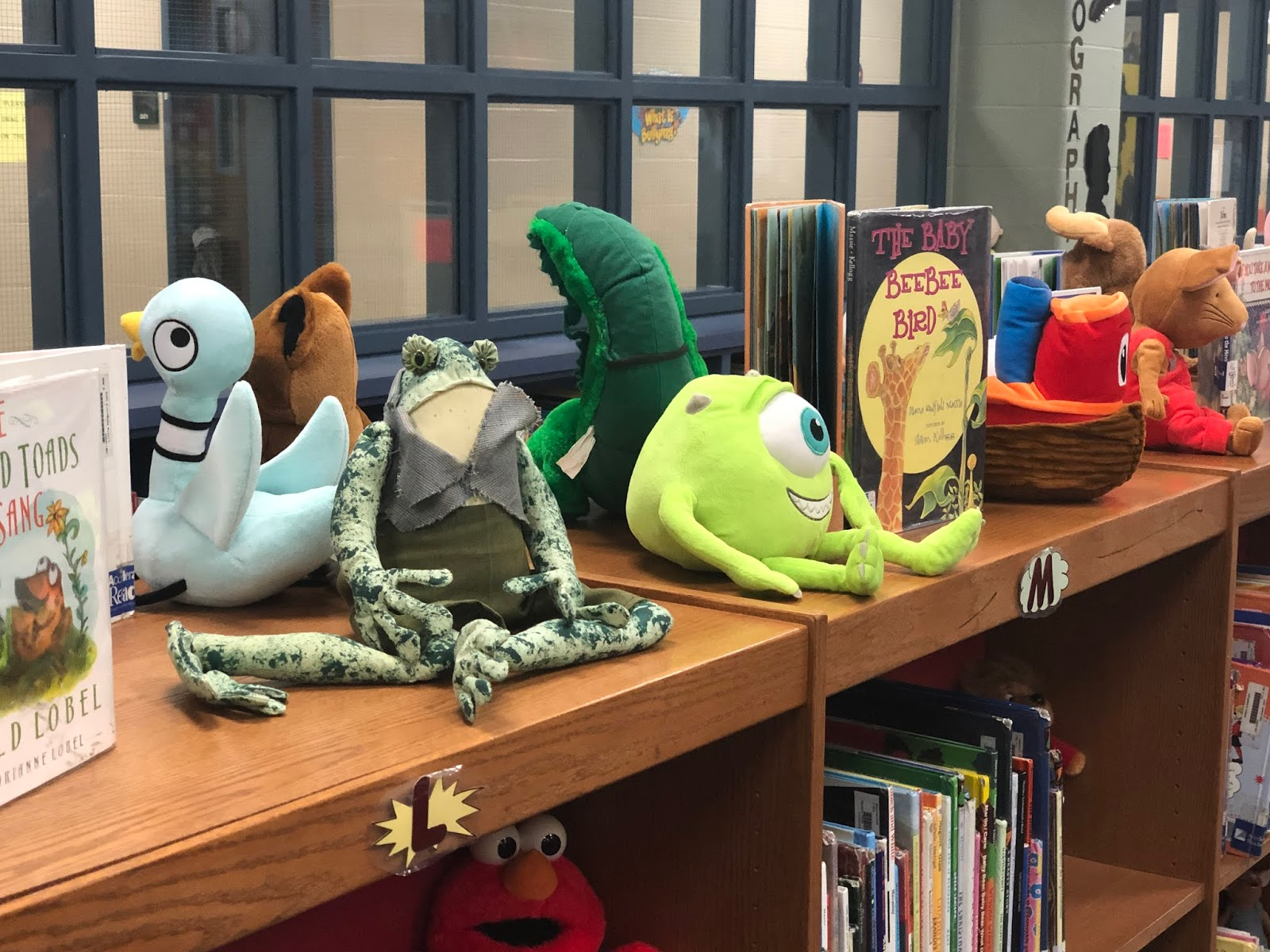 The Biker Technology iCoach: Cannan Elementary School Library