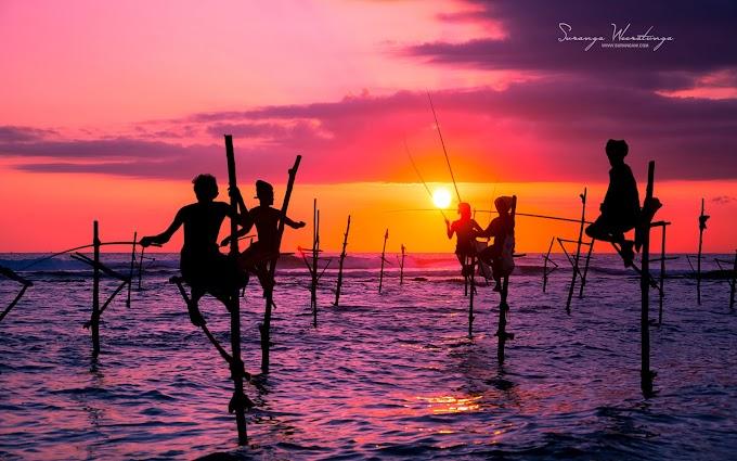 """Mời các bạn tải về bộ hình nền """"cuộc sống ở Sri Lanka"""" đầy màu sắc"""