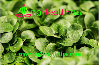 9 Evidence Based Health Tips to enhance living for the aged