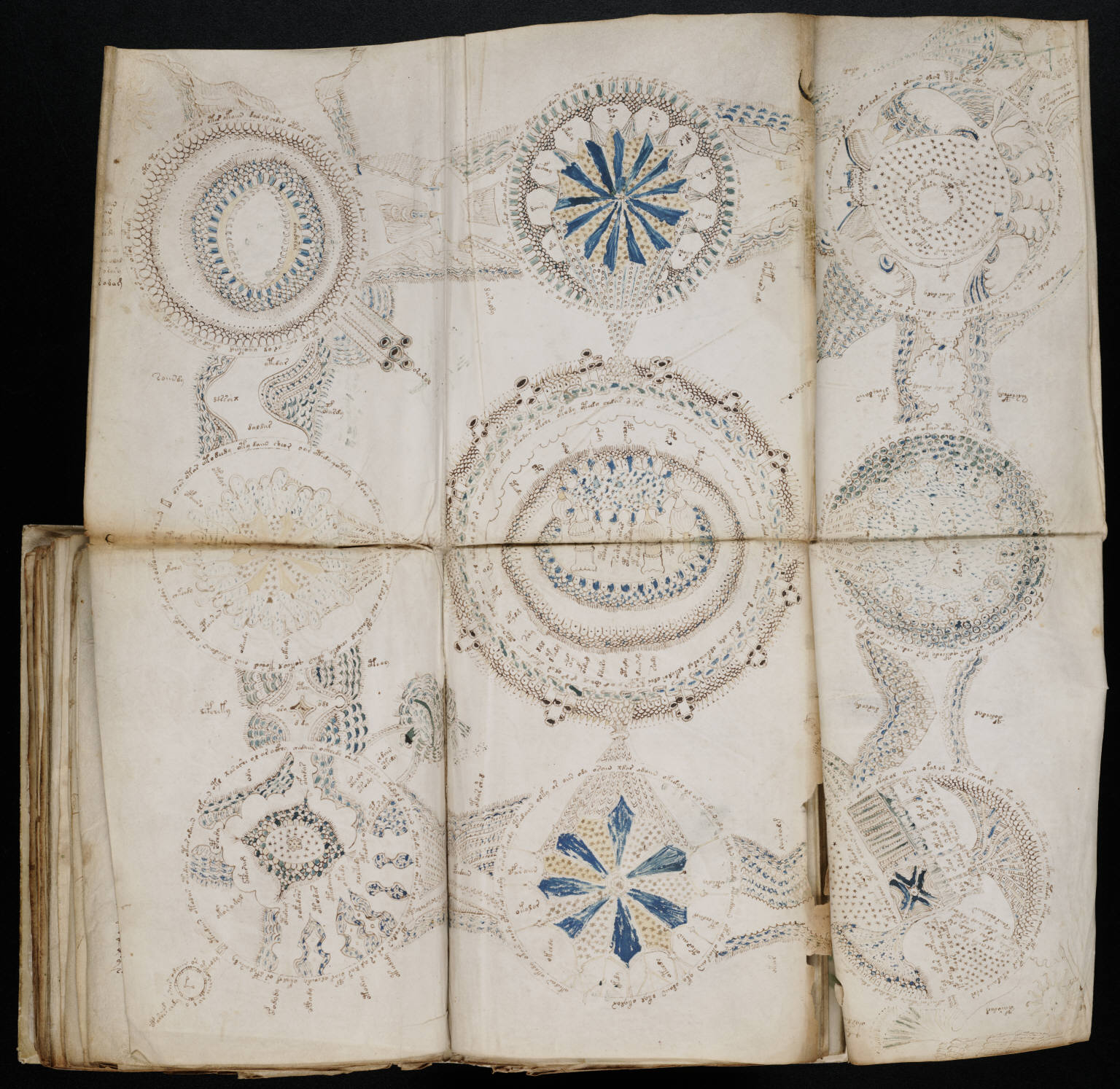 manuscrito156