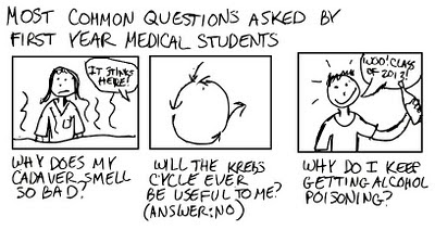A Cartoon Guide to Becoming a Doctor: March 2010