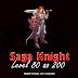 Saga Knight: Level 80 ao 200