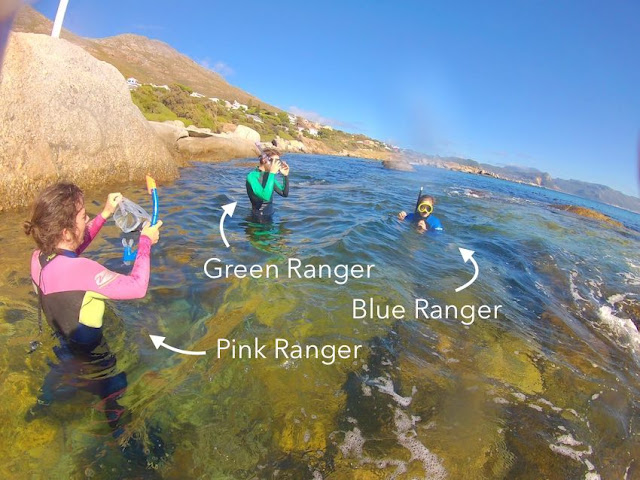 Snorkellers in wetsuits who resemble power rangers