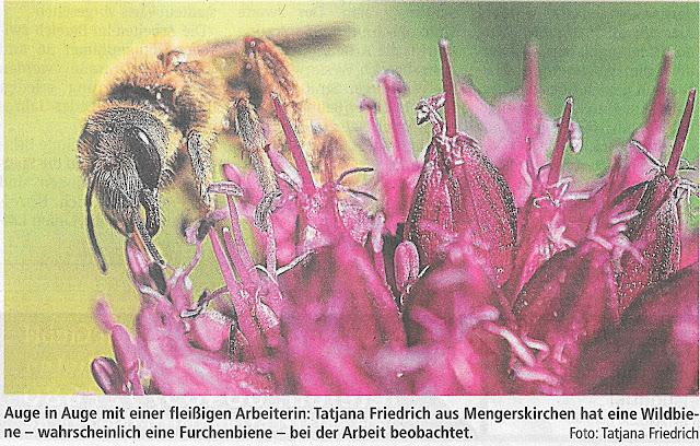 Tageszeitung Weilburg Tatjana Friedrich
