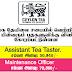Vacancy In Sri Lanka Tea Board