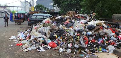 Contoh Sampah Organik dan Anorganik