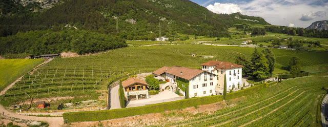 Maso Martis winery in Trento DOC Trentino