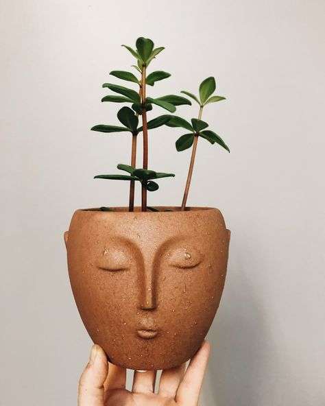 face planter-perfect for a succulent #plants