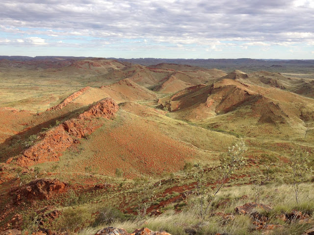 Oldest evidence of life on land found in 3.48 billion-year-old Australian rocks