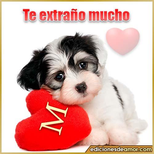 perrito con corazón M