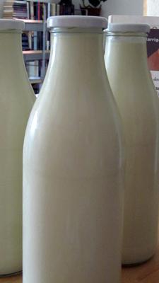 Experimentos lcteos 1 queso fresco y ricotta  Hierbas y especias