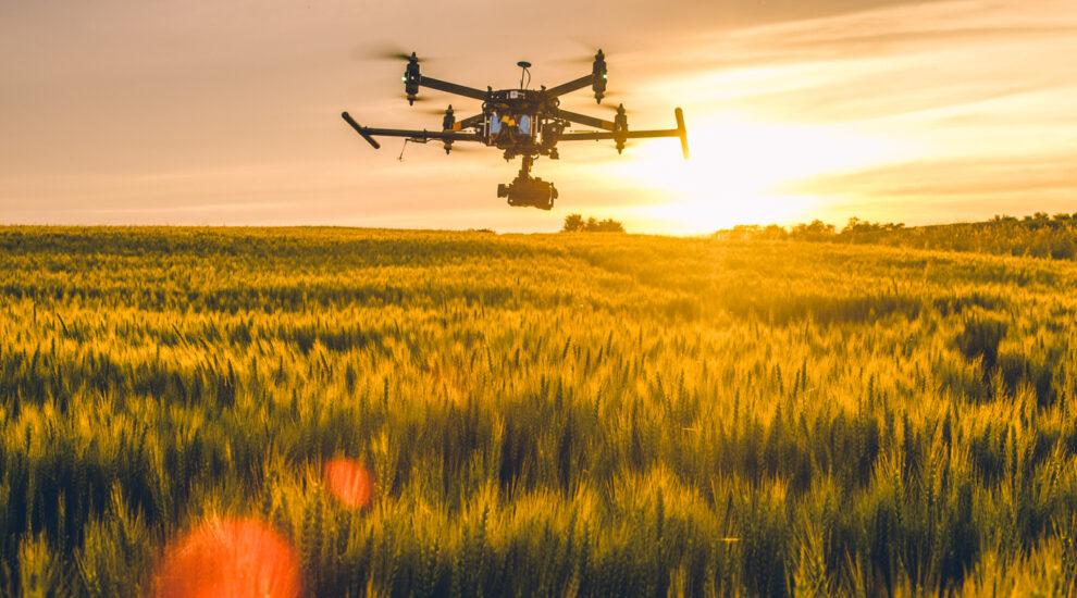 Uso de drones em atividades agropecuárias é regulamentado pelo Mapa