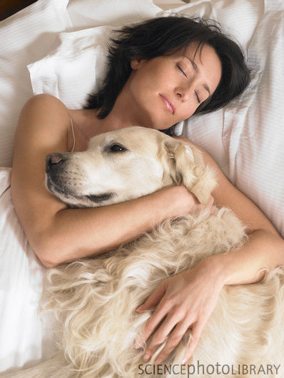 Women And Dog Sex Videos