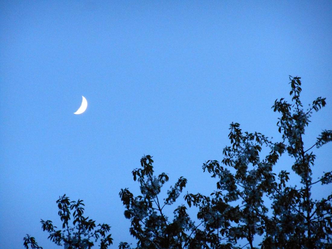 La luna sopra Kristianstad, 11 maggio 2016