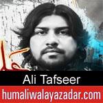 https://www.humaliwalyazadar.com/2018/10/ali-tafseer-nohay-2019.html