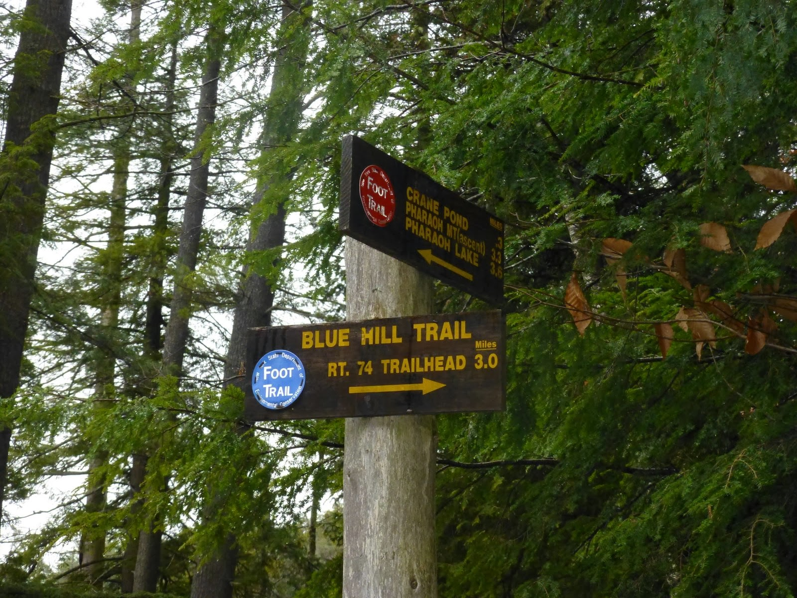 off on adventure long swing trail to crane pond pharaoh lakes