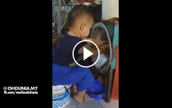 Video Budak Baru 2 Tahun Dah Pandai Parut Kelapa Tolong Nenek
