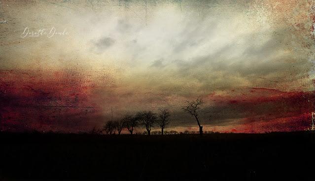 landscape. Sauerland, Landschaftsfotografie, landscapephotography, textureblend, abstract, abstractart, art for the wall, artwork