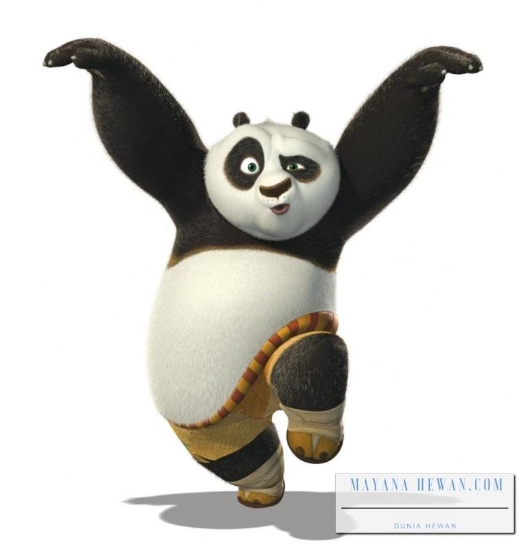 99 Kartun Panda Lucu Dan Imut Cikimm Com