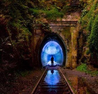 Facts and secrets: Glowworm Tunnel Australia