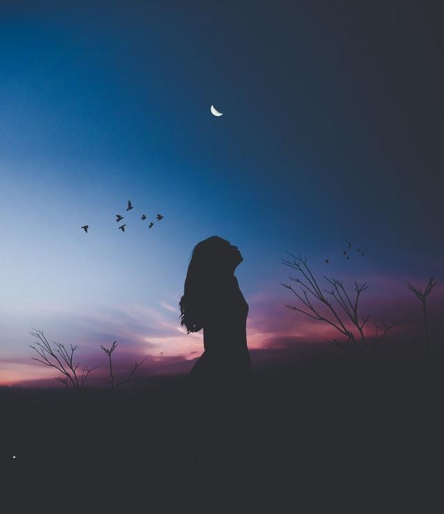 Life Shayari_دسمبر کی پہلی شام__December Shayari