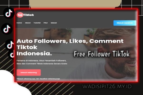 gotiktoks.com cara mendapatkan followers likes dan comment tiktok secara gratis dan aman