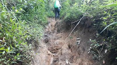 Gunung Cikuray via Carik